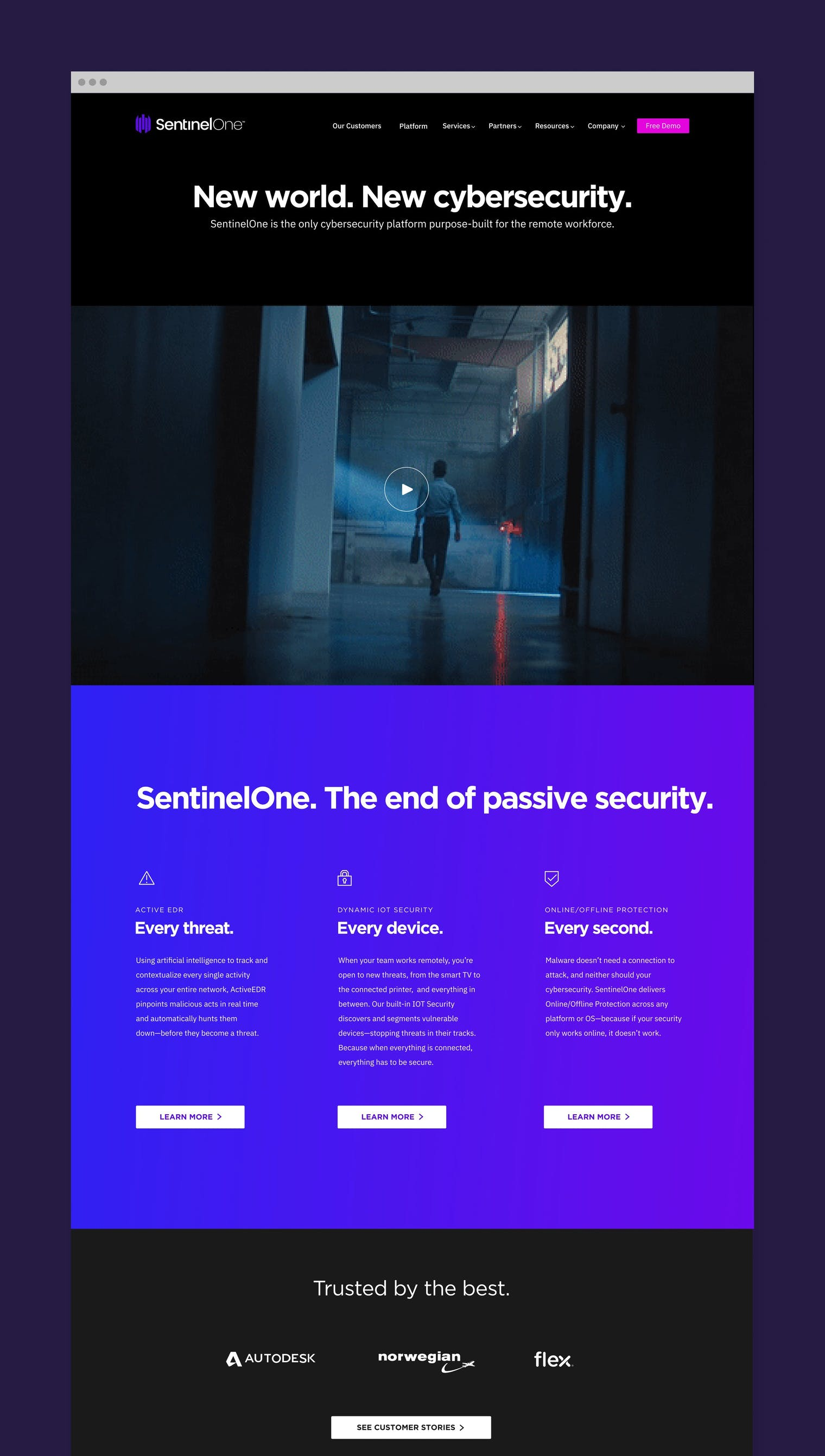 Sentinel One WFH 7 png